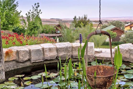 משאבת מים עתיקה, פסלי נוי ושבילים מלווים את המתחם