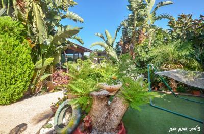 חצר מטופחת טובלת בצמחייה ירוקה עם פינות ישיבה נוחות וערסלים