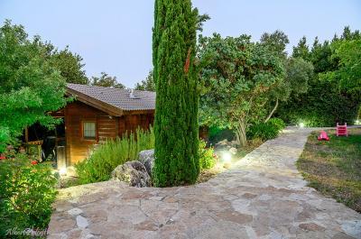 החצר היפה והמטופחת, עם עצי נוי וצמחים