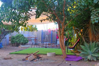 חצר דירת האירוח מלאת עציצים ועצי נוי